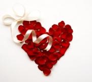 Rött hjärta ros